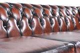 Chesterfield Sofa Original Leder| 5-Sitzer | Antik braun | 12 Jahre Garantie_